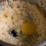 Hoot Owl Cookies Prep Photos