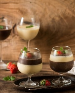 Chocolate and Vanilla panna cotta
