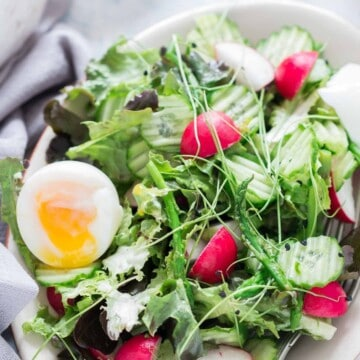 fresh spring salad made from fresh spring mix of tender greens