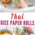 Thai vegetarian summer rolls with mango dipping sauce with text