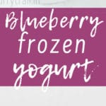 blueberry frozen yogurt in white bowl with a spoon with text overlay
