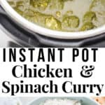instant pot chicken saag with text overlay