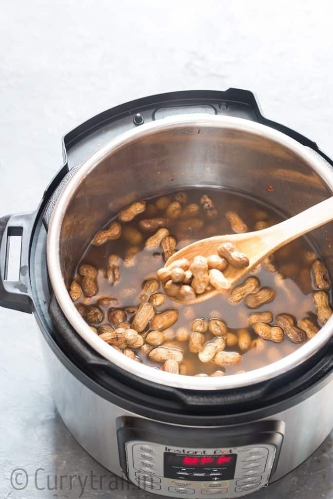 boiled peanuts with shell in instant pot with salt and spices