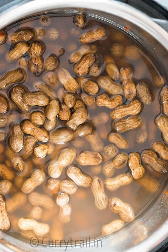 peanuts boiled in instant pot with salt and spices