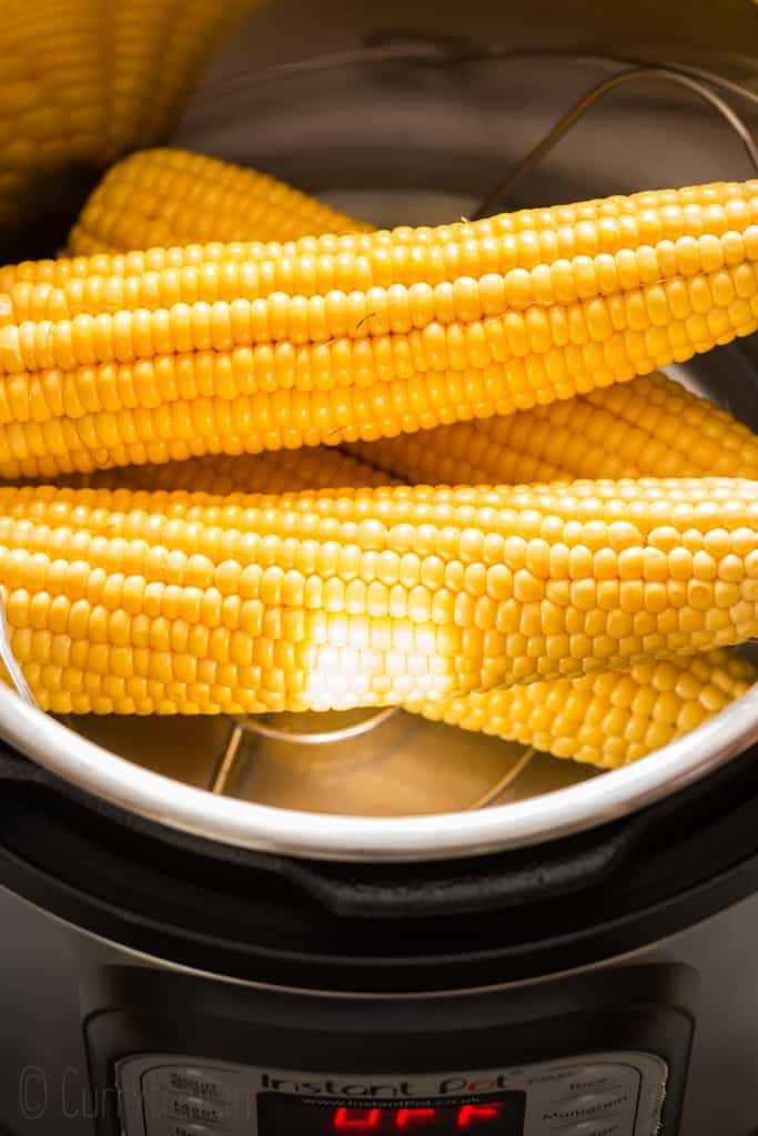 corn on cob ready for instant pot corn on cob recipe
