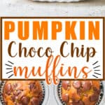 chocolate chip pumpkin muffins on muffin tins with text overlay